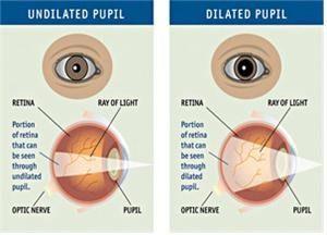 눈동자, Pupilography